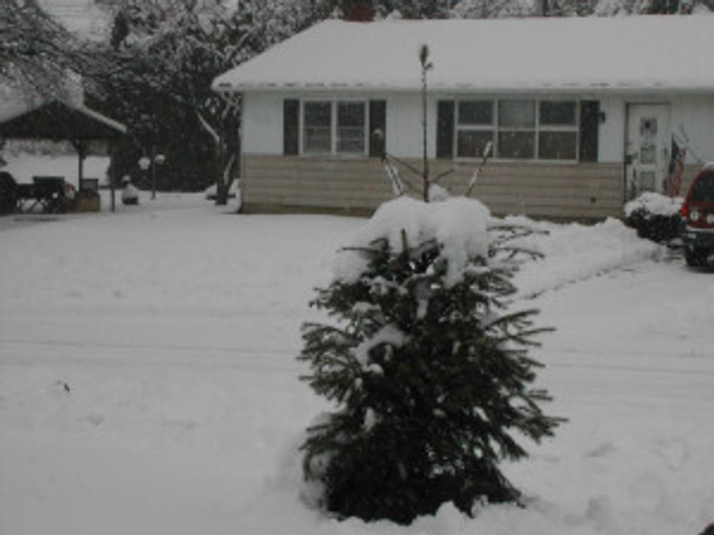 snowdaypt2020314 002