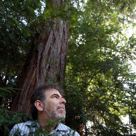 El hombre-árbol