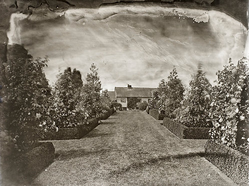 A Wet Collodion Ambrotype print of RPS Garden Competition Winner, RHS Hyde Hall