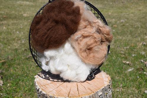Washed Alpaca Fiber - Fine