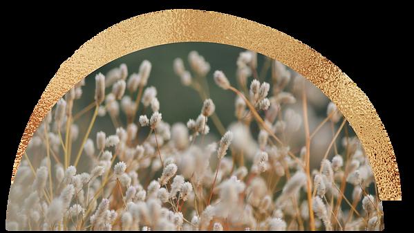 gold foil (2).png