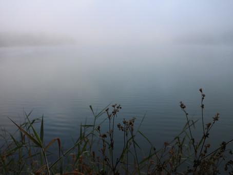 Những sáng sớm mờ sương  - Foggy morning on the lake