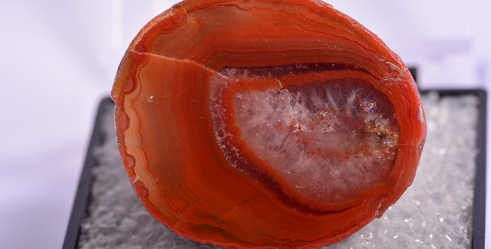 TN Scottish Agate Dunure Scotland BDL413