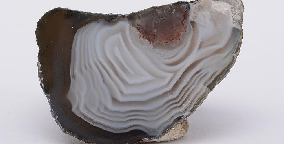 Scottish Agate Perth AG0137