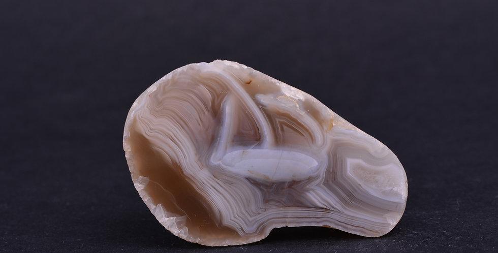 Wave Whorled Scottish Agate Mull AG0473