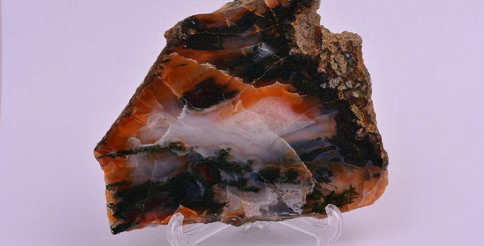 Scottish Vein Moss Agate Burn Anne AG0358