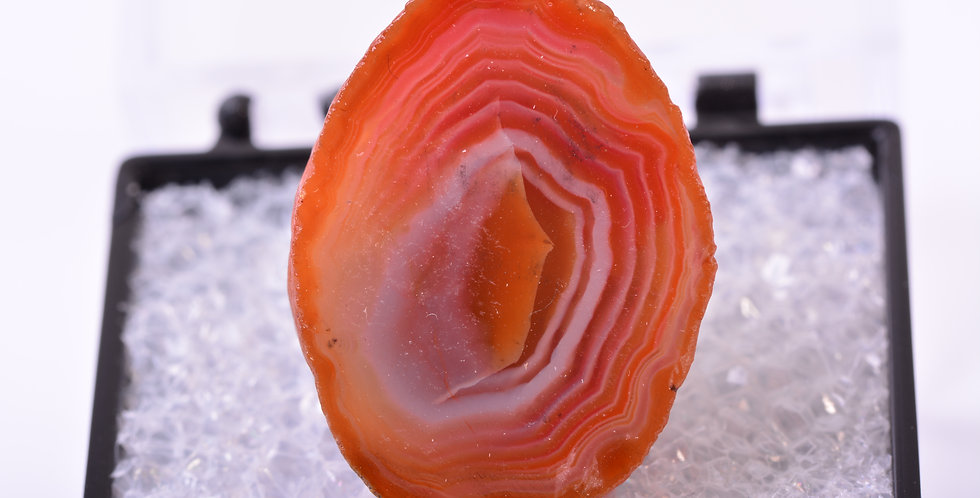 TN Middlefield Scottish Agate Scotland MDL281