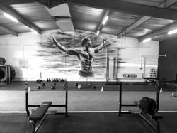 Slider 9 elite gym glasgow strength a.jpg