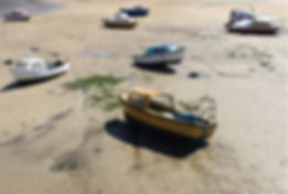BOATS AT LOW TIDE [Credit William Thomso
