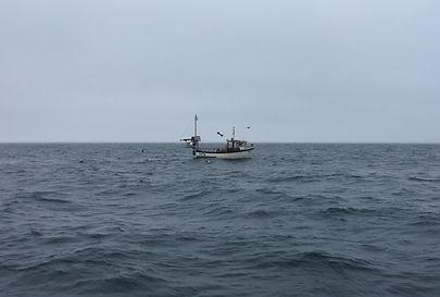 FISHING BOAT [Credit William Thomson].jp