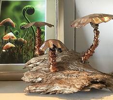 Studio mushroom.jpg