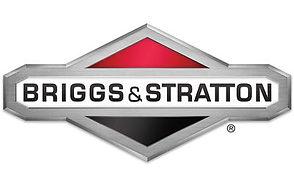 briggs_logo_genericarticle.jpg