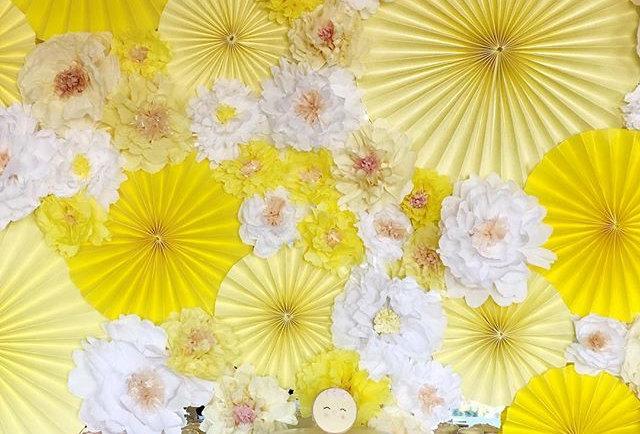 Fondo Molinetes y flores - Backdrop