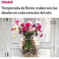 Nota Flores por temporada