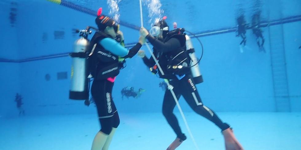 체험 다이빙