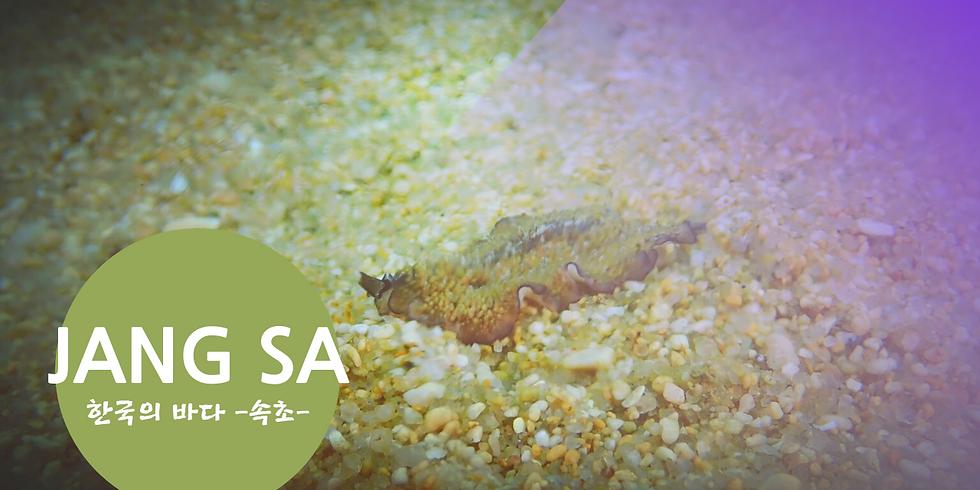 한국의 바다 -속초-