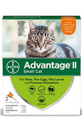 Bayer Advantage II Cat