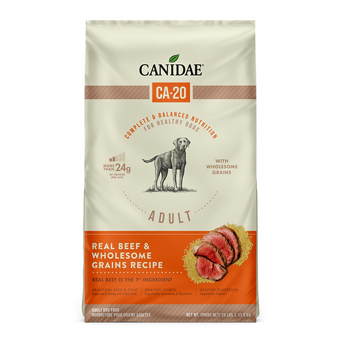Canidae CA-20 Real Beef Recipe with Wholesome Grains Dog