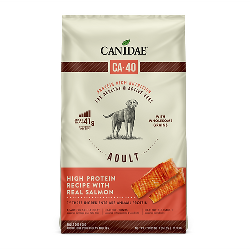 Canidae CA-40 High Protein with Real Salmon Recipe Dog