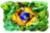 ASG Brasil (Grupo de Especialistas em Anfíbios)