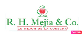 Logo RHMejia.png
