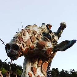 Sculpture garden- Sylvains'girrafet