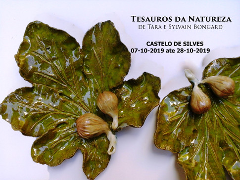 Treasures of Nature - Silves Castle