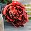 Thumbnail: Rose XXL