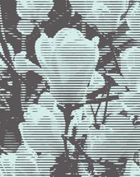 송민규, Flat Trajectory 05, 92x73cm, Acrylic on Canvas, 2021
