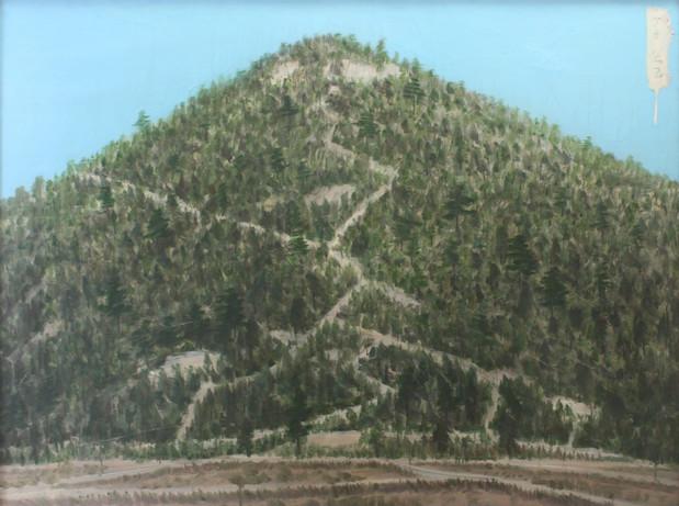 김을, Father's mountain, Oil on panel, 122x161cm, 1997