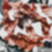 Flower 210.JPG
