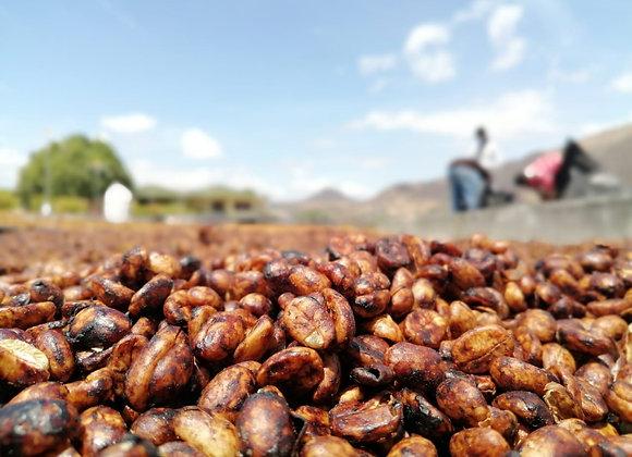 Finca Idealista Honey Process Rainforest Microlot