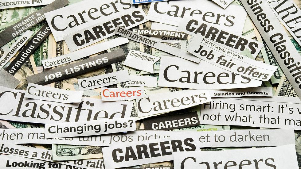 Revised Federal Resume or CV