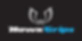 Link to HawkGrips website