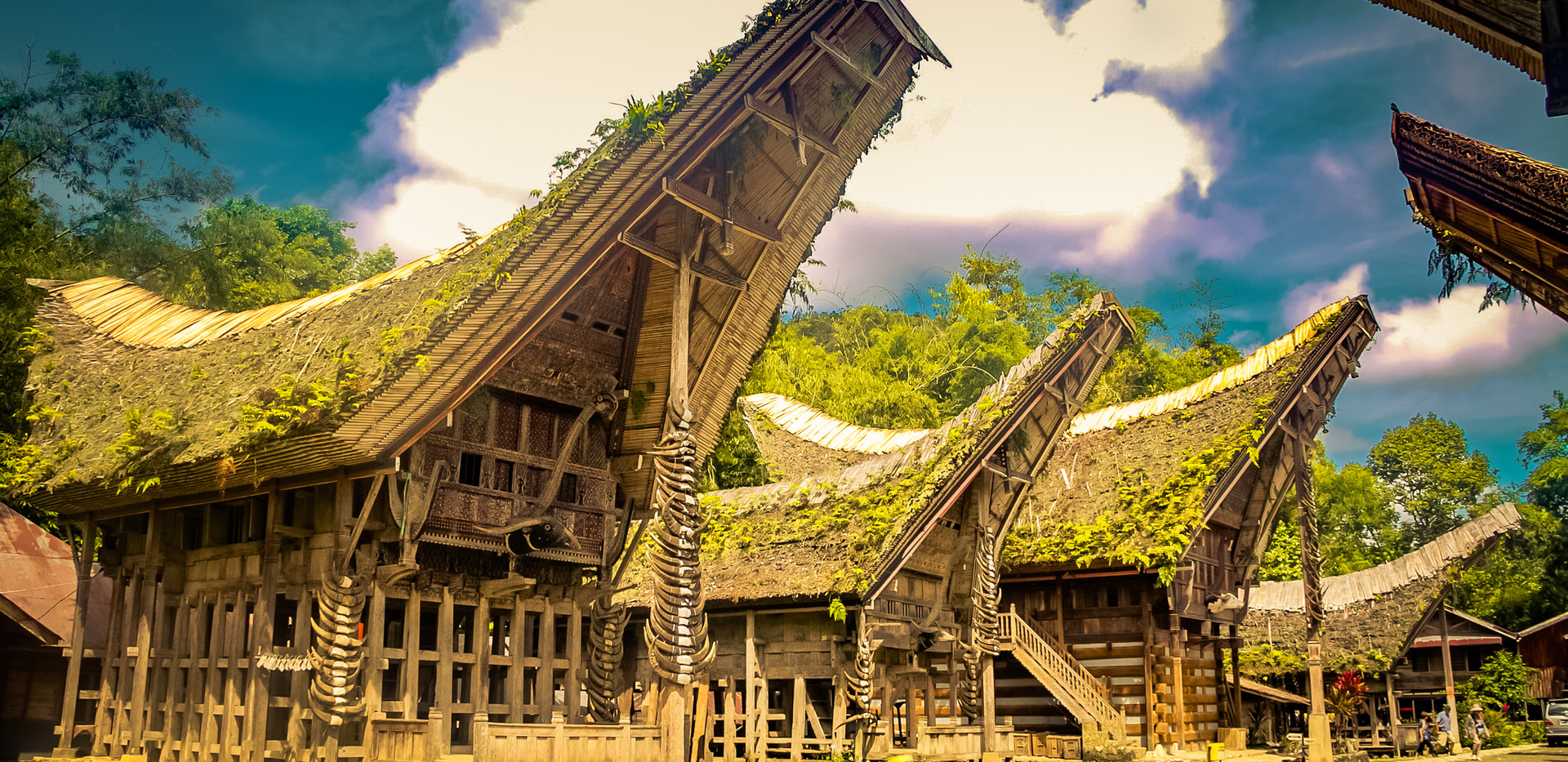 Photo of wooden ancestral houses with pl