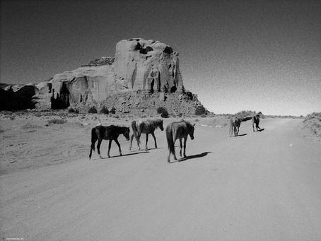 The Southwest USA (2006)
