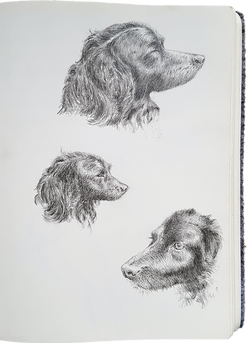 Shilou - preparatory sketches