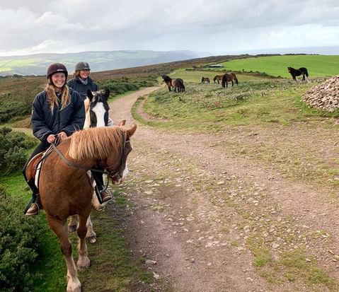 Exmoor Ponies meet our Horses on North H