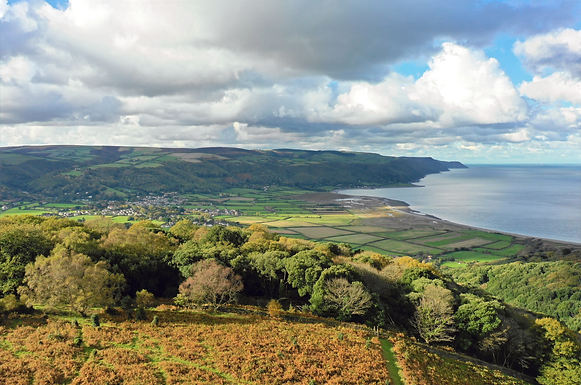 Porlock Marsh from North Hill_edited.jpg
