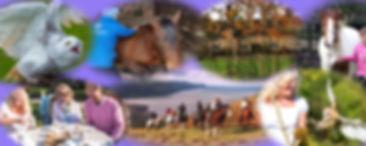 banner e-e.jpg