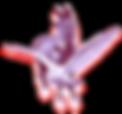 Pegasus Logo_edited.png