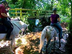 stoats farm river crossing.jpg