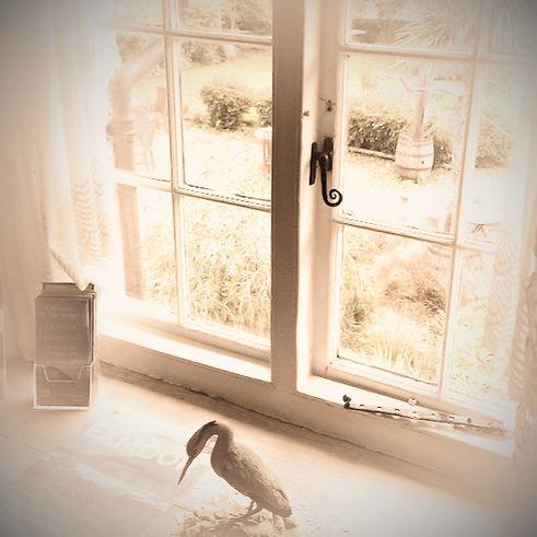 View Front Garden Badgers Sett