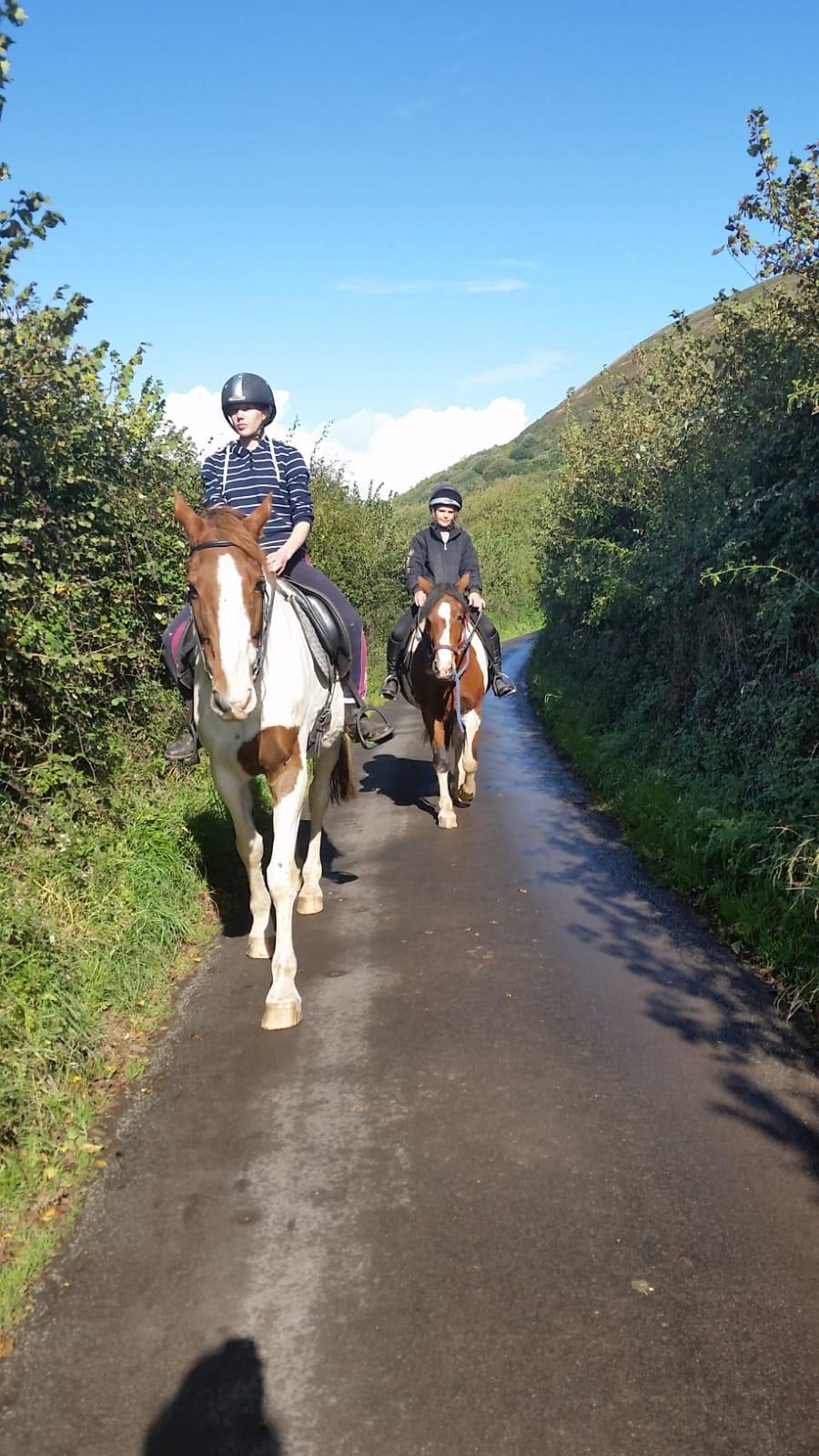 Exmoor Riding's new pony, Flo