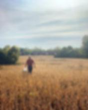 A field of dreams. The Gideon Owen Viney