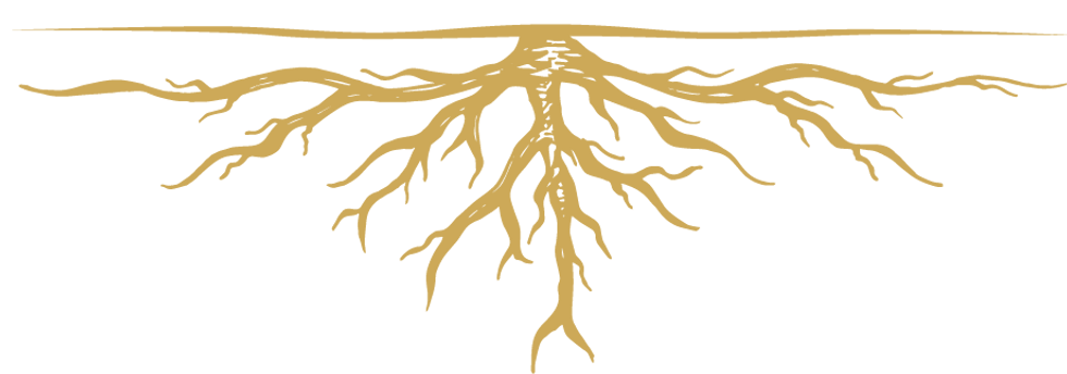 GO_Roots.png