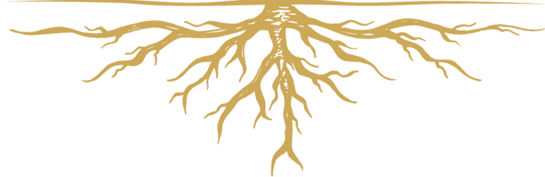 GO_Roots_edited.png