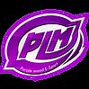 2.PLM.png