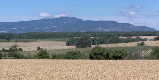 Le Mont Ventoux vu de Revest d Bion