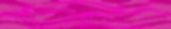 PBW_Web Headder_2020-01.png